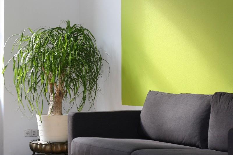 apartment-comfort-contemporary-260046-1